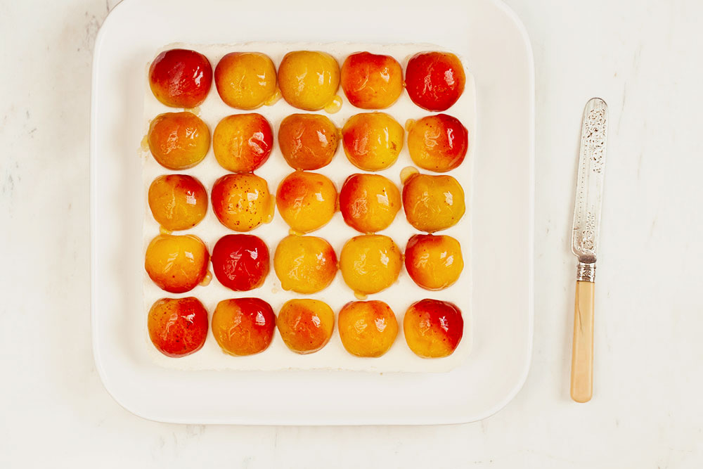 Apricot Bars 1