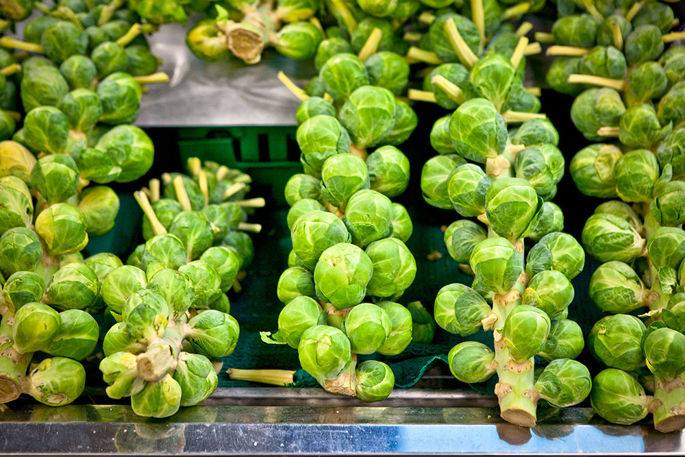 Berkeley Bowl - Brussels Sprouts