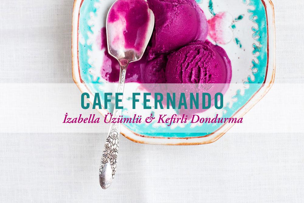 İzabella Üzümlü & Kefirli Dondurma