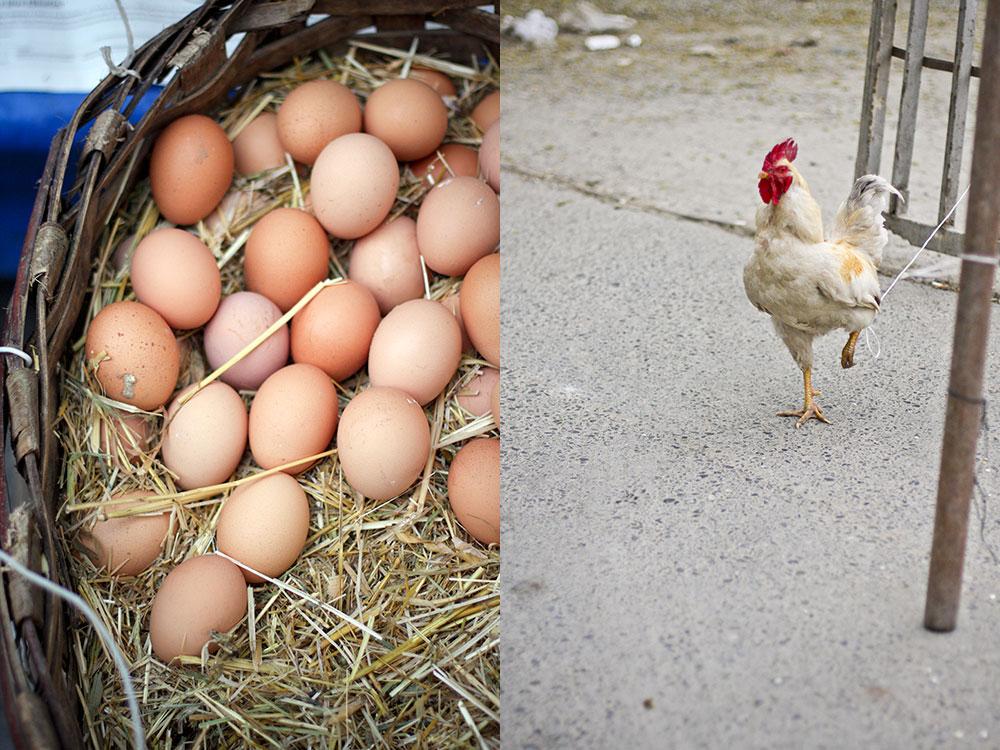 Kasimpasa Kastamonu Food Market 10