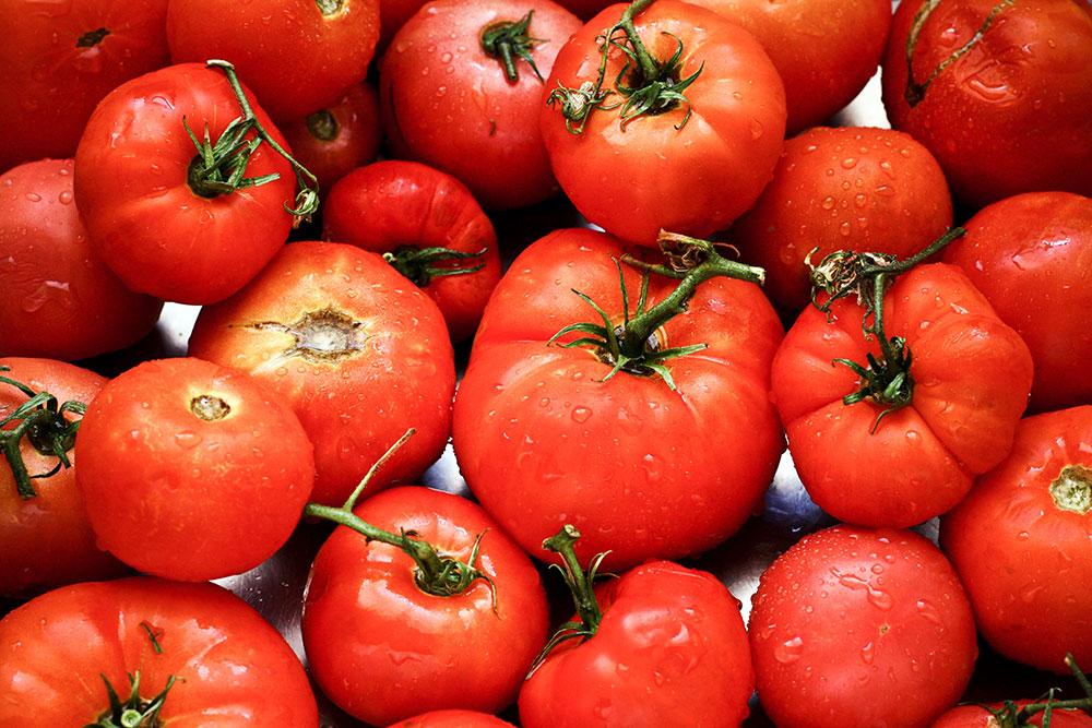 Homemade Tomato Sauce 3
